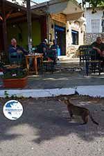 Kandanos Crete - Chania Prefecture - Photo 12 - Photo GreeceGuide.co.uk