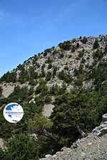 Koudoumas Crete - Heraklion Prefecture - Photo 87 - Photo GreeceGuide.co.uk