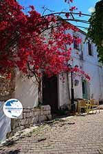 Koutouloufari Crete - Heraklion Prefecture - Photo 22 - Photo GreeceGuide.co.uk