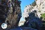 Kotsifos gorge | Rethymnon Crete | Photo 25 - Photo GreeceGuide.co.uk