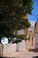 Loutra Crete - Rethymno Prefecture - Photo 6 - Photo GreeceGuide.co.uk