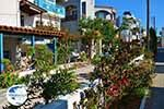 Platanias Crete - Chania Prefecture - Photo 36 - Photo GreeceGuide.co.uk