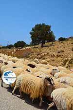 Triopetra Crete - Rethymno Prefecture - Photo 2 - Photo GreeceGuide.co.uk