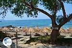 Triopetra Crete - Rethymno Prefecture - Photo 13 - Photo GreeceGuide.co.uk