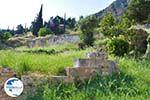 Delphi (Delfi) | Fokida | Central Greece  Photo 2 - Photo GreeceGuide.co.uk