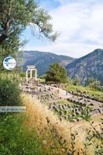Delphi (Delfi) | Fokida | Central Greece  Photo 15 - Photo GreeceGuide.co.uk