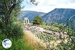 Delphi (Delfi) | Fokida | Central Greece  Photo 18 - Photo GreeceGuide.co.uk