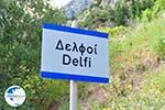 Delphi (Delfi) | Fokida | Central Greece  Photo 26 - Photo GreeceGuide.co.uk