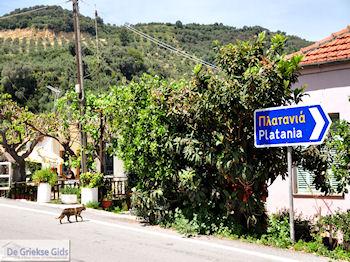 Leuk small village Patelari near Platanias and Stalos (Platanias Chania Crete - Stalos Chania Crete) Photo 4  | Chania | Crete - Photo GreeceGuide.co.uk