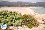 Sandy beach Elafonisi (Elafonissi)   Chania Crete   Chania Prefecture 49 - Photo GreeceGuide.co.uk