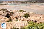 Sandy beach Elafonisi (Elafonissi) | Chania Crete | Chania Prefecture 51 - Photo GreeceGuide.co.uk