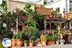 Georgioupolis | Chania Crete | Chania Prefecture 19 - Photo GreeceGuide.co.uk