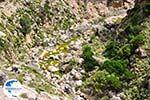 Kourtaliotiko gorge Crete | Greece | Greece  Photo 10 - Photo GreeceGuide.co.uk