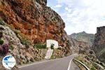 Kourtaliotiko gorge Crete | Greece | Greece  Photo 14 - Photo GreeceGuide.co.uk