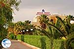 Malia Crete | Greece | Greece  Photo 47 - Photo GreeceGuide.co.uk