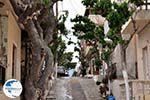Mirtos Crete | Greece | Greece  Photo 4 - Photo GreeceGuide.co.uk