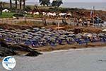 Panormos Crete | Greece | Greece  Photo 2 - Photo GreeceGuide.co.uk