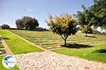 Maleme | Chania Crete | Chania Prefecture 14 - Photo GreeceGuide.co.uk