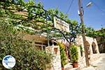 Taverna Matigis in Stalos  | Chania | Crete - Photo GreeceGuide.co.uk