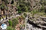 Samaria gorge | Crete | Greece Photo 8 - Photo GreeceGuide.co.uk