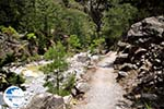Samaria gorge | Crete | Greece Photo 37 - Photo GreeceGuide.co.uk