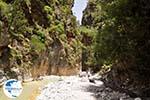 Samaria gorge | Crete | Greece Photo 38 - Photo GreeceGuide.co.uk