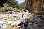 Samaria gorge | Crete | Greece Photo 41 - Photo GreeceGuide.co.uk