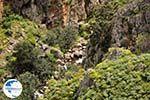 Traditional Village Topolia | Chania Crete | Chania Prefecture 25 - Photo GreeceGuide.co.uk