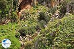 Traditional Village Topolia | Chania Crete | Chania Prefecture 26 - Photo GreeceGuide.co.uk