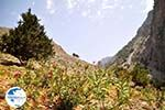 From Agia Roumeli to the Samaria gorge   Chania Crete   Greece - Photo GreeceGuide.co.uk