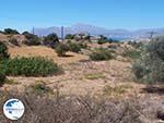 Near the camping of Komos | Crete | Greece  Photo 1 - Photo GreeceGuide.co.uk