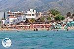 Malia Crete | Greece | Greece  - Photo 004 - Photo GreeceGuide.co.uk