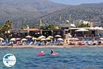 Malia Crete | Greece | Greece  - Photo 007 - Photo GreeceGuide.co.uk