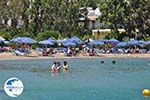 Elounda Crete | Greece | Greece  - Photo 039 - Photo GreeceGuide.co.uk