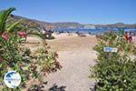 Elounda Crete | Greece | Greece  - Photo 042 - Photo GreeceGuide.co.uk