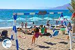 Kalamaki Crete | South Crete | Greece  Photo 24 - Photo GreeceGuide.co.uk