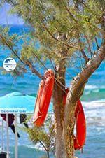 Kalamaki Crete | South Crete | Greece  Photo 29 - Photo GreeceGuide.co.uk