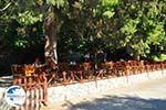 Preveli | South Crete | Greece  Photo 40 - Photo GreeceGuide.co.uk
