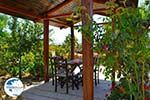 Villa Kapariana near Mires | South Crete | Greece  Photo 3 - Photo GreeceGuide.co.uk