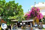 Pitsidia | South Crete | Greece  Photo 2 - Photo GreeceGuide.co.uk