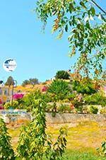 Pitsidia | South Crete | Greece  Photo 4 - Photo GreeceGuide.co.uk