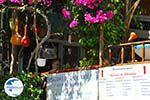 Pitsidia | South Crete | Greece  Photo 8 - Photo GreeceGuide.co.uk