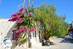 Sivas | South Crete | Greece  Photo 2 - Photo GreeceGuide.co.uk