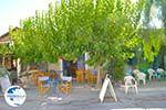Sivas | South Crete | Greece  Photo 5 - Photo GreeceGuide.co.uk
