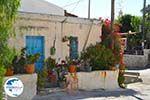 Sivas | South Crete | Greece  Photo 8 - Photo GreeceGuide.co.uk
