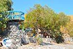 Lendas (Lentas) | South Crete | Greece  Photo 31 - Photo GreeceGuide.co.uk