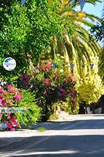 Panagia Kaliviani near Mires| South Crete | Greece  Photo 25 - Photo GreeceGuide.co.uk