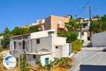 Kamilari | South Crete | Greece  Photo 7 - Photo GreeceGuide.co.uk