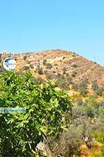 Kamilari | South Crete | Greece  Photo 8 - Photo GreeceGuide.co.uk
