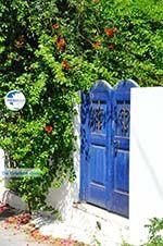 Kamilari | South Crete | Greece  Photo 35 - Photo GreeceGuide.co.uk